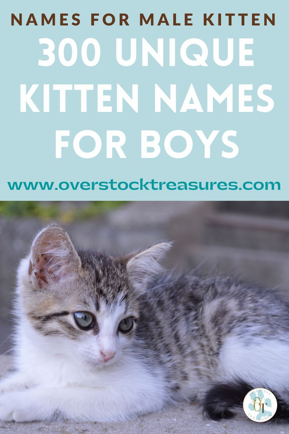 300 Male Cat Names In 2020 Cat Names Kitten Names Kitten Names Boy