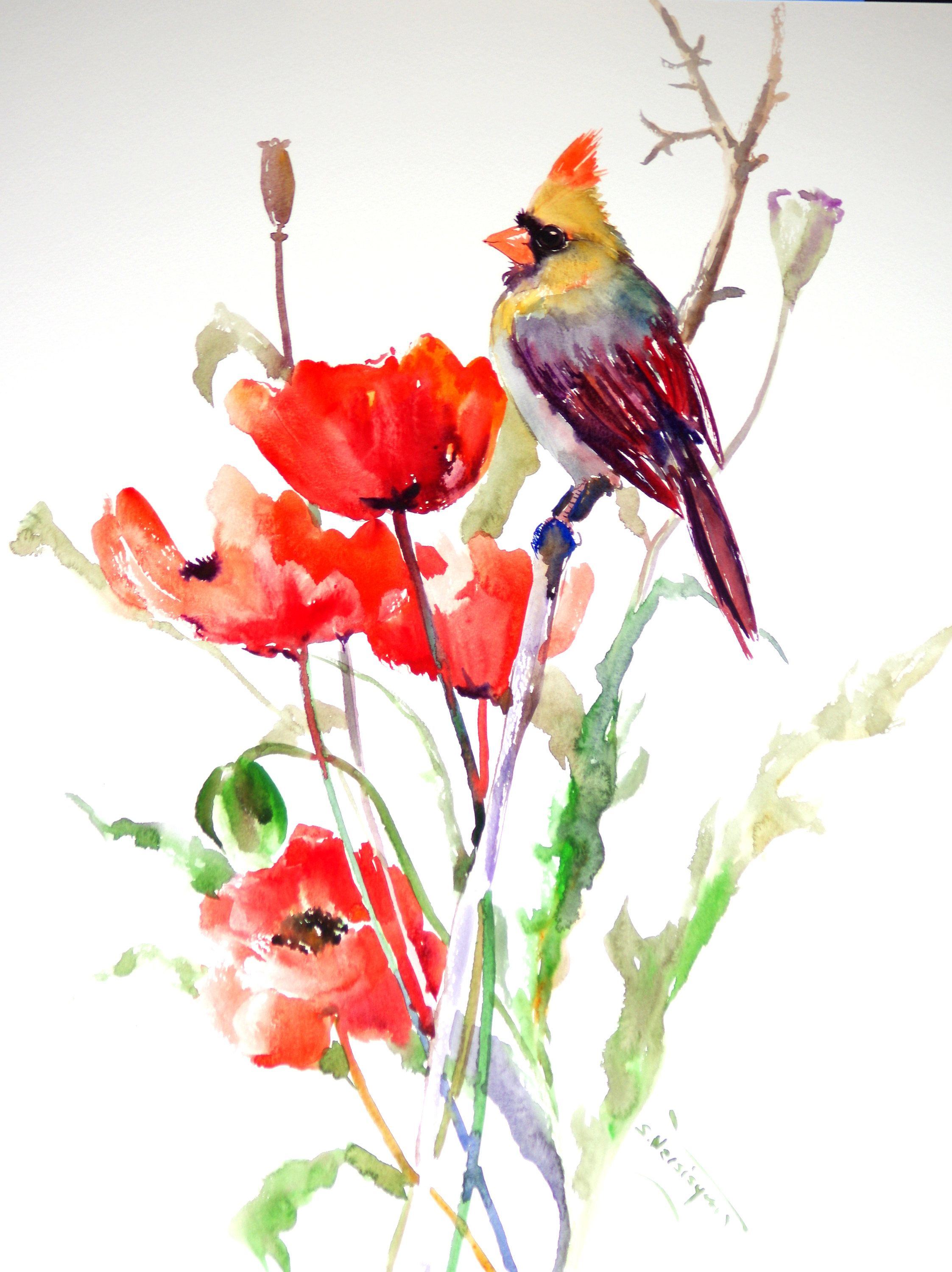 Female Cardinal And Poppies Bird And Flowers Red Art Bird