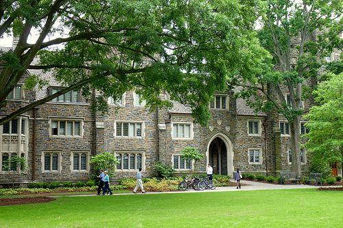 Head, Collection Strategy and Development – Duke University