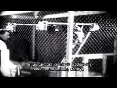 ▶ Age Of Fear - Psychiatry`s Reign Of Terror - YouTube