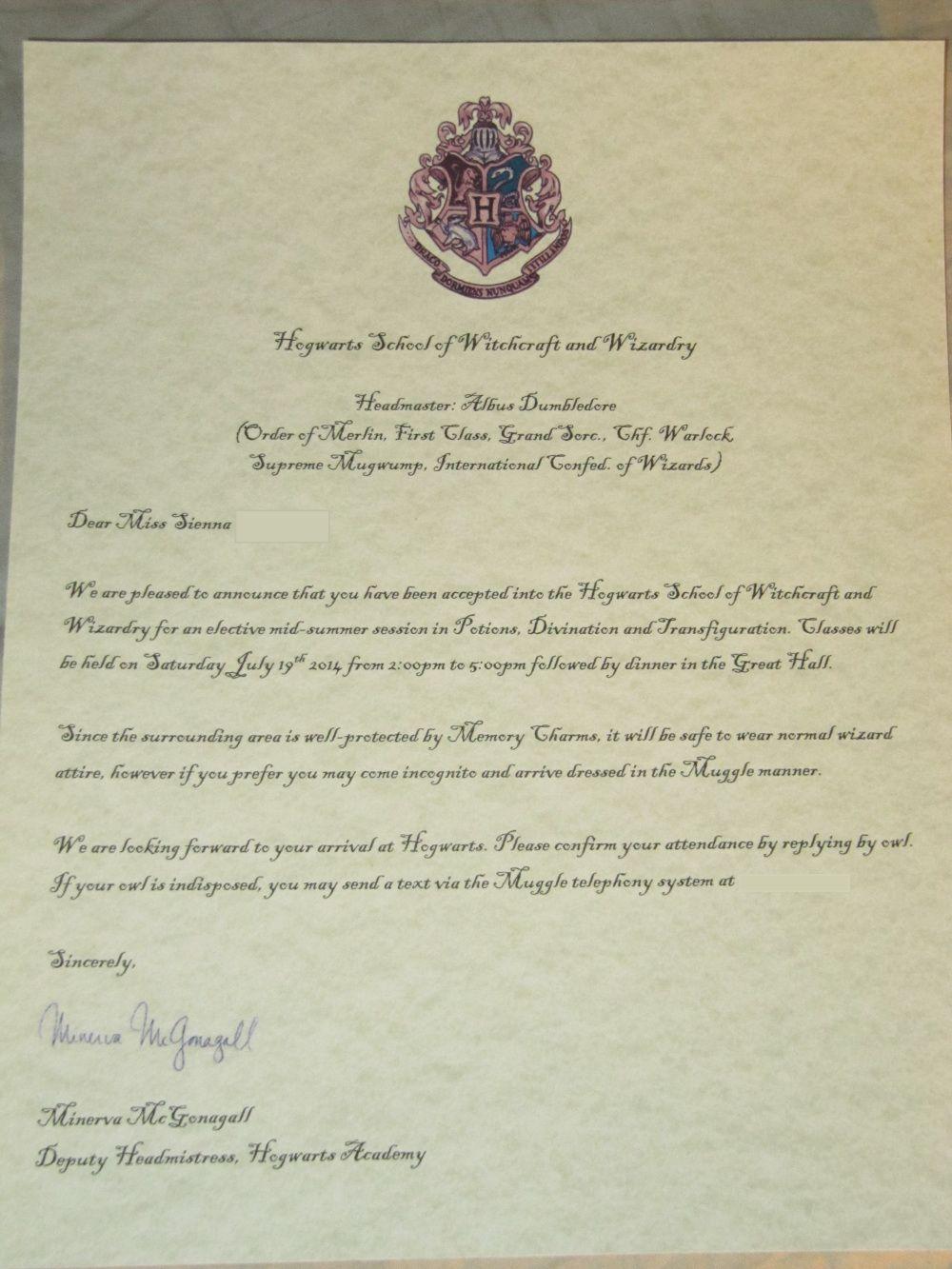 IMG_50123 Harry Potter Party Ideas Harry potter