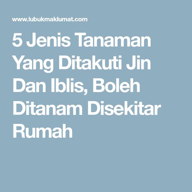 5 Jenis Tanaman Yang Ditakuti Jin Dan Iblis, Boleh Ditanam