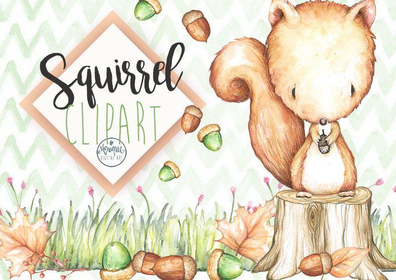 Squirrel Clipart Watercolor Woodland Nursery Animals Clipart Etsy Animal Clipart Clip Art Woodland Animal Prints