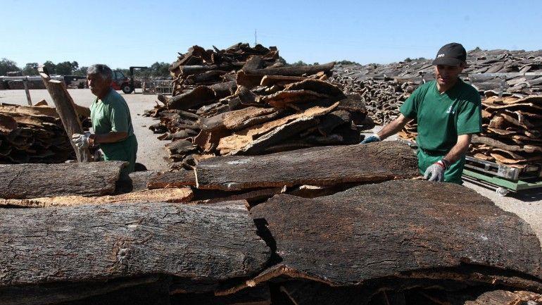 Lucro da Corticeira Amorim sobe mais de 40% e atinge 8,4 milhões no 1.º trimestre - Observador