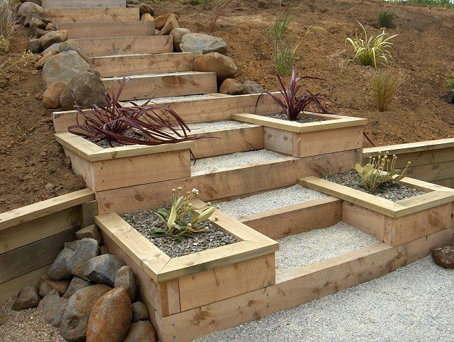 Macrocarpa Steps And Planter Boxes Landscape Construction