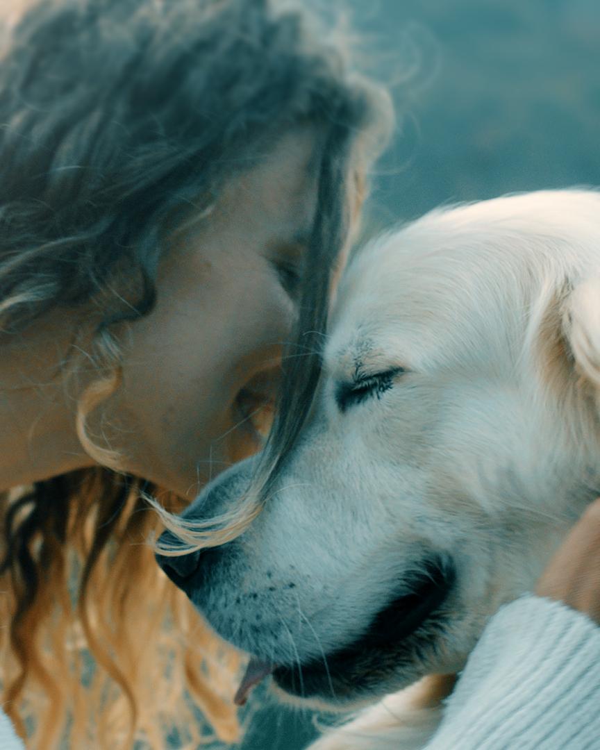 Das Beste für deinen Hund - Pets Deli