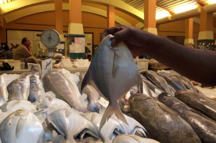Fresh Fish Market In Kuwait Myhometownguide Spon Kuwait Food Fresh Fish Market Places To Eat