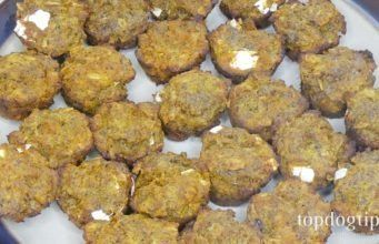 Beef and Rice Crock Pot Homemade Dog Food Recipe Video  Recipe Pumpkin Turmeric Dog Treats for Arthritis