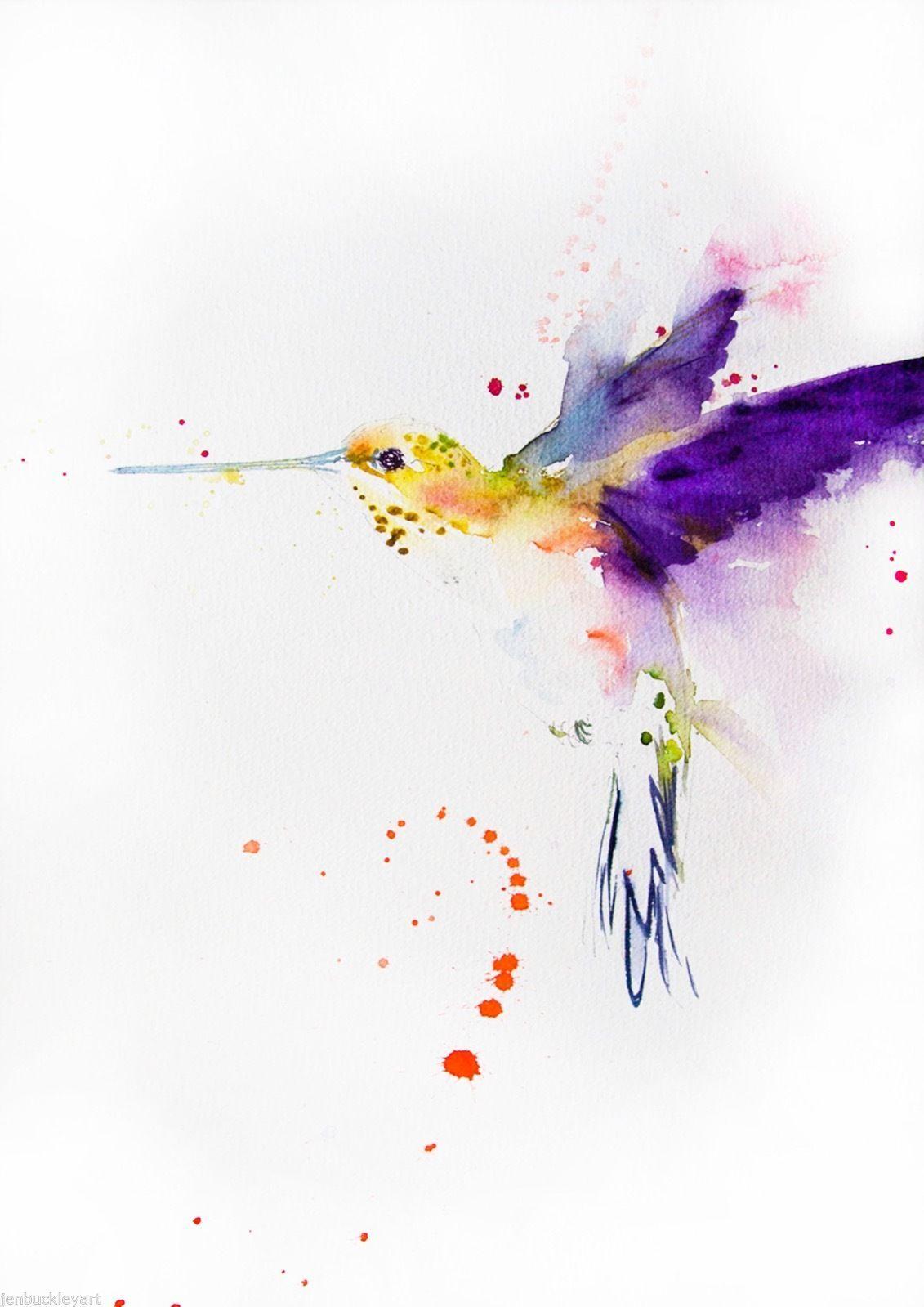 Jen Buckley Hummingbird Aquarell Kolibri Aquarelllmalerei Und