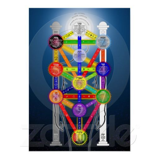The Qabalistic Tree Of Life Structure Diagram Poster Zazzle Com Tree Of Life Occult Life Poster In the jewish kabbalist view, both of the two trees in the. the qabalistic tree of life structure