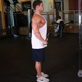 Bodybuilding.com - Back Training: What Exercises Do You Need To Perform?