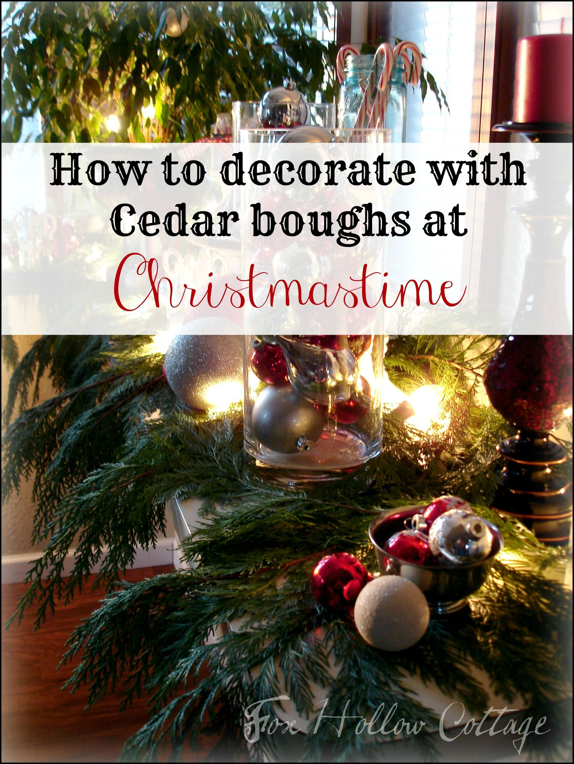 thrifty christmas decorating with cedar boughs christmas trees