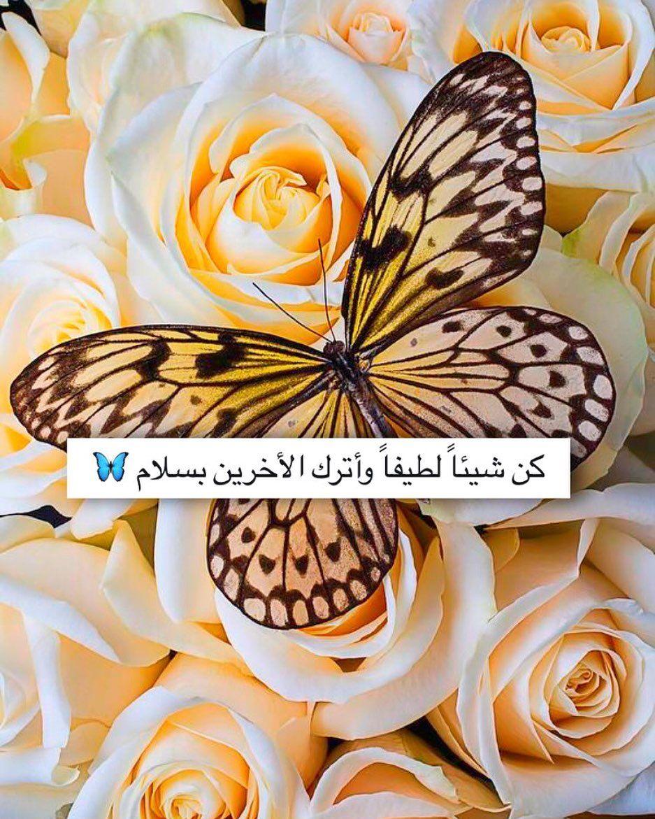 Aljanah On Instagram أذكار إسلامية ديني دين اسلام اسلامي هاشتاق اذكار صور رمزيات خلفيات تذكير دنيا الاخرة استغفر تو Fruit Pineapple Food