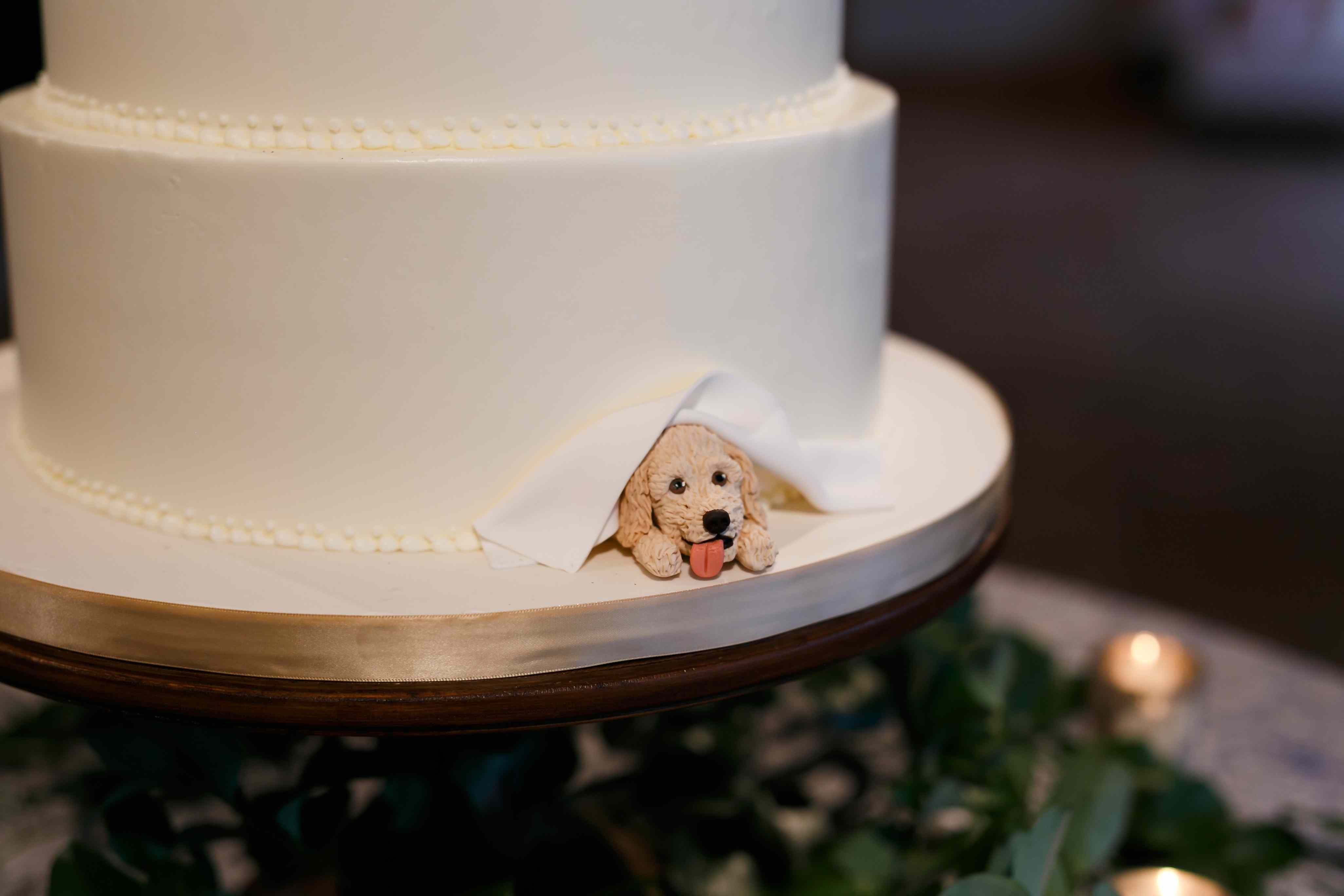 50 TooCute Ways to Include Your Pet in Your Wedding
