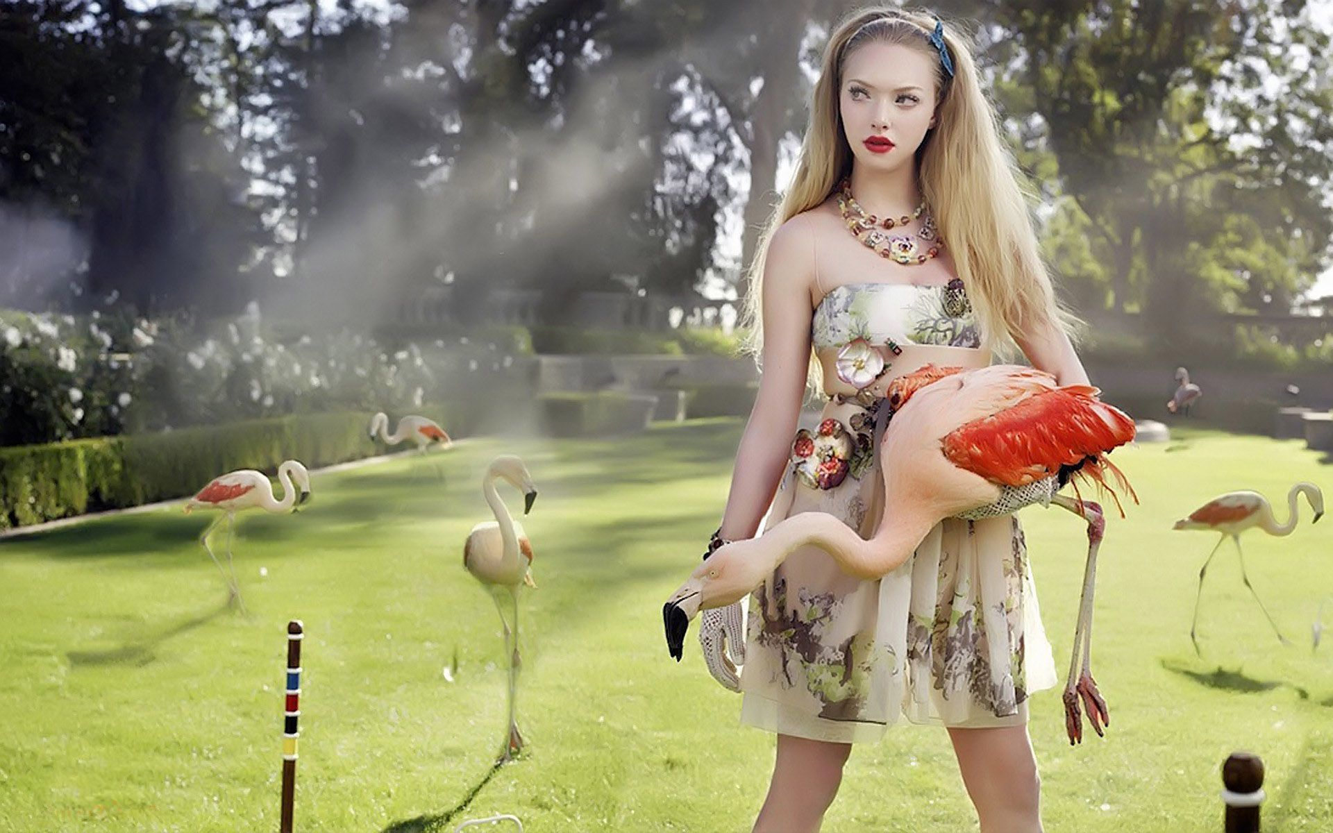 Pin by Jessica Khor on Alice | Amanda seyfried, Amanda, Gorgeous women