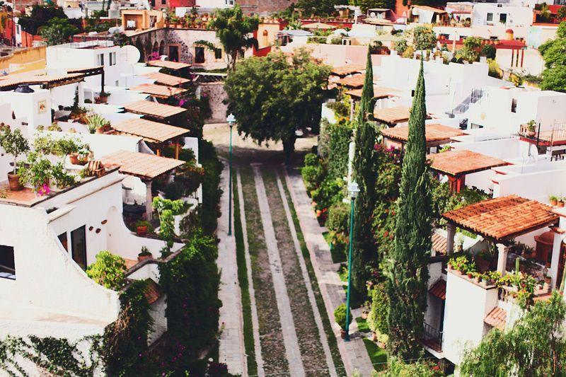 San Miguel de Allende #city #paradise #nature