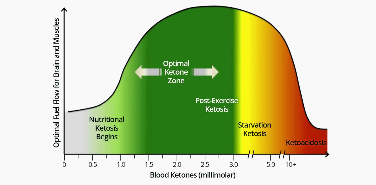 Keto diet blood levels