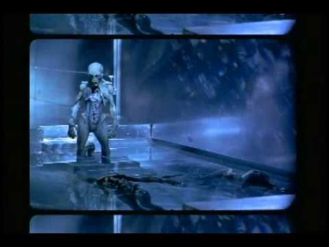 Tool has some of the greatest videos ever.