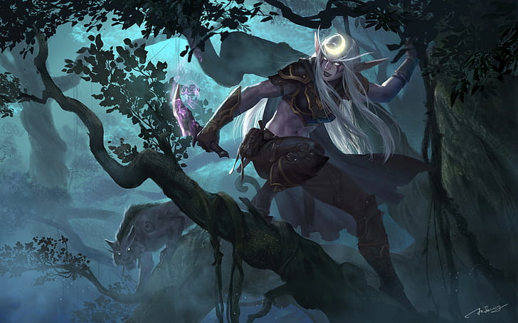 Hd Wallpaper World Of Warcraft Night Elves Elfs Druid Rogue Jianing Hu Wallpaper Flar World Of Warcraft Druid World Of Warcraft Characters Warcraft Art