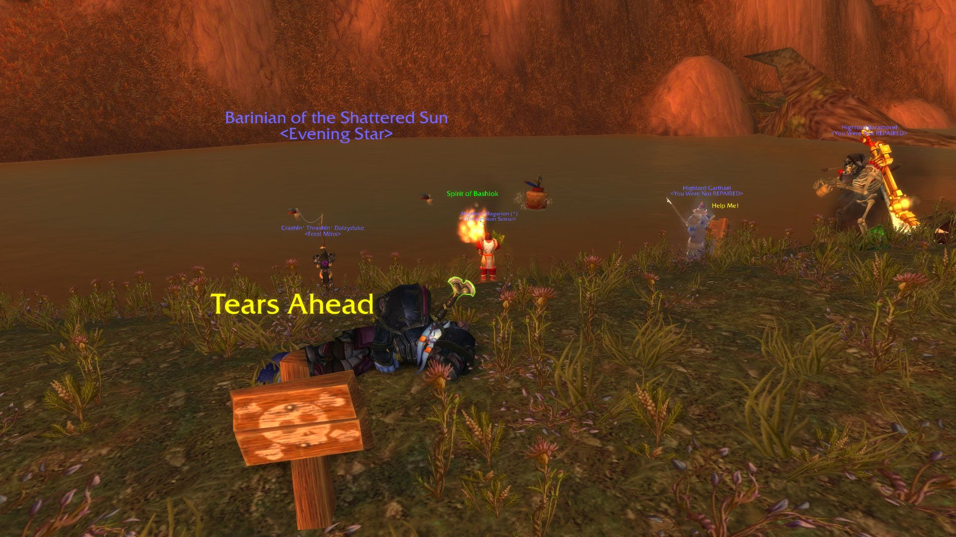The current state of the Western Plaguelands #worldofwarcraft #blizzard #Hearthstone #wow #Warcraft #BlizzardCS #gaming