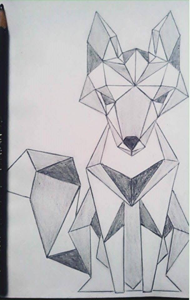 Drawing Sketch Geometric Fox Pencil Mag Kor