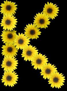 Blindada Por Deus Alfabeto Florido Girassol Png Flores