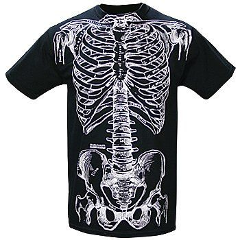amazon: anatomically correct human skeleton bones - medical, Skeleton