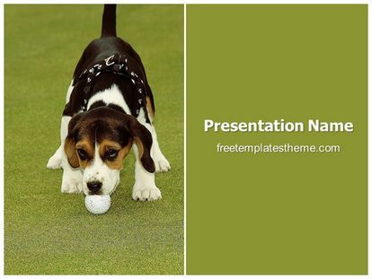 Download Free Dog Golf Ball Powerpoint Template For Your