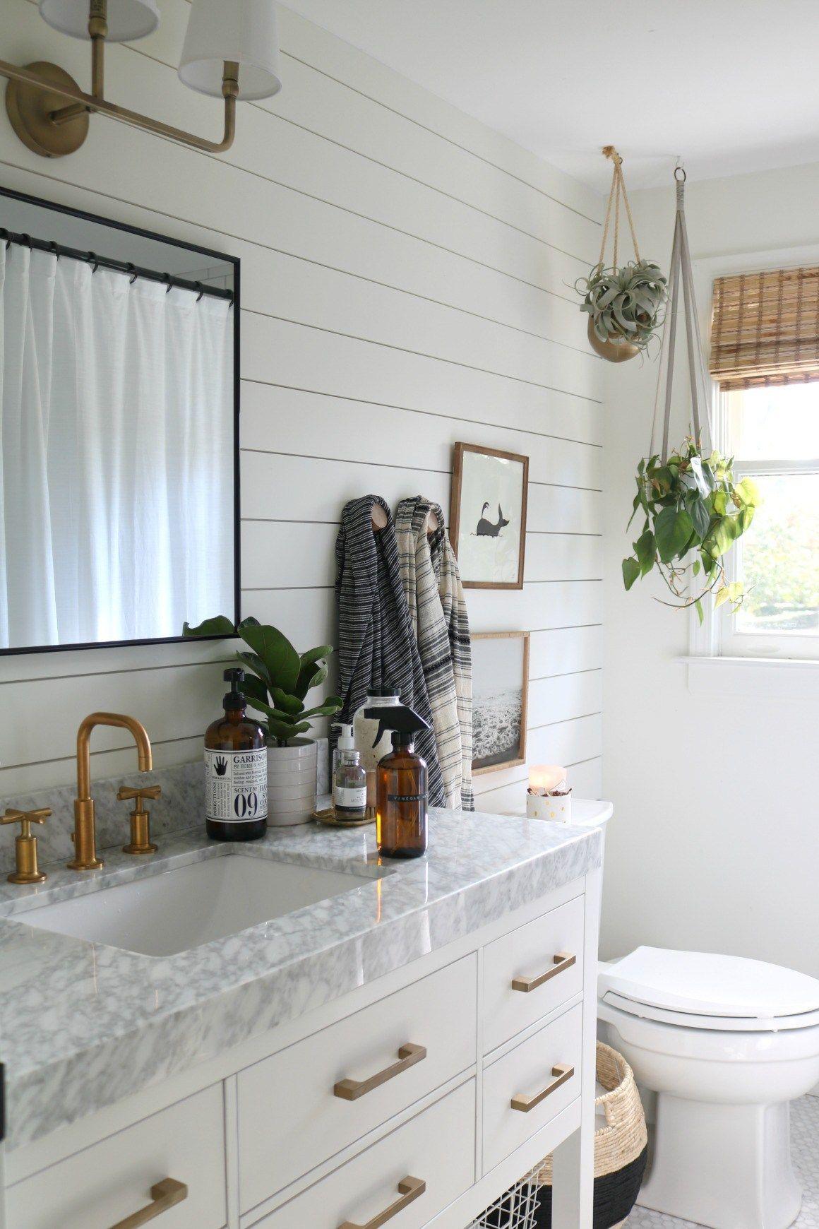 16 plants Bathroom counter ideas