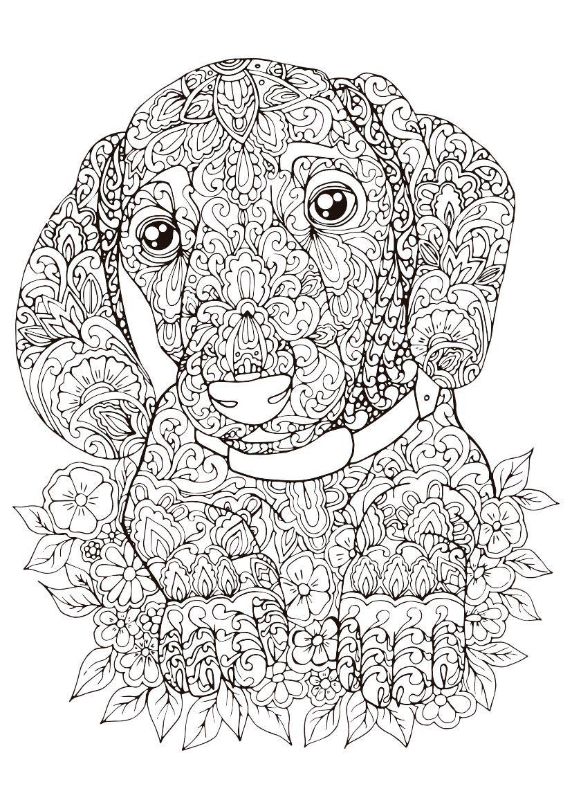Pin De Rika Van Pelt En Mandalas 280 En 2020 Dibujos Mandalas