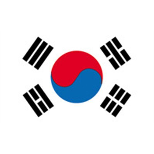 "SEOUL SOUTH KOREA 2x3 /""Photo Fridge Magnet"