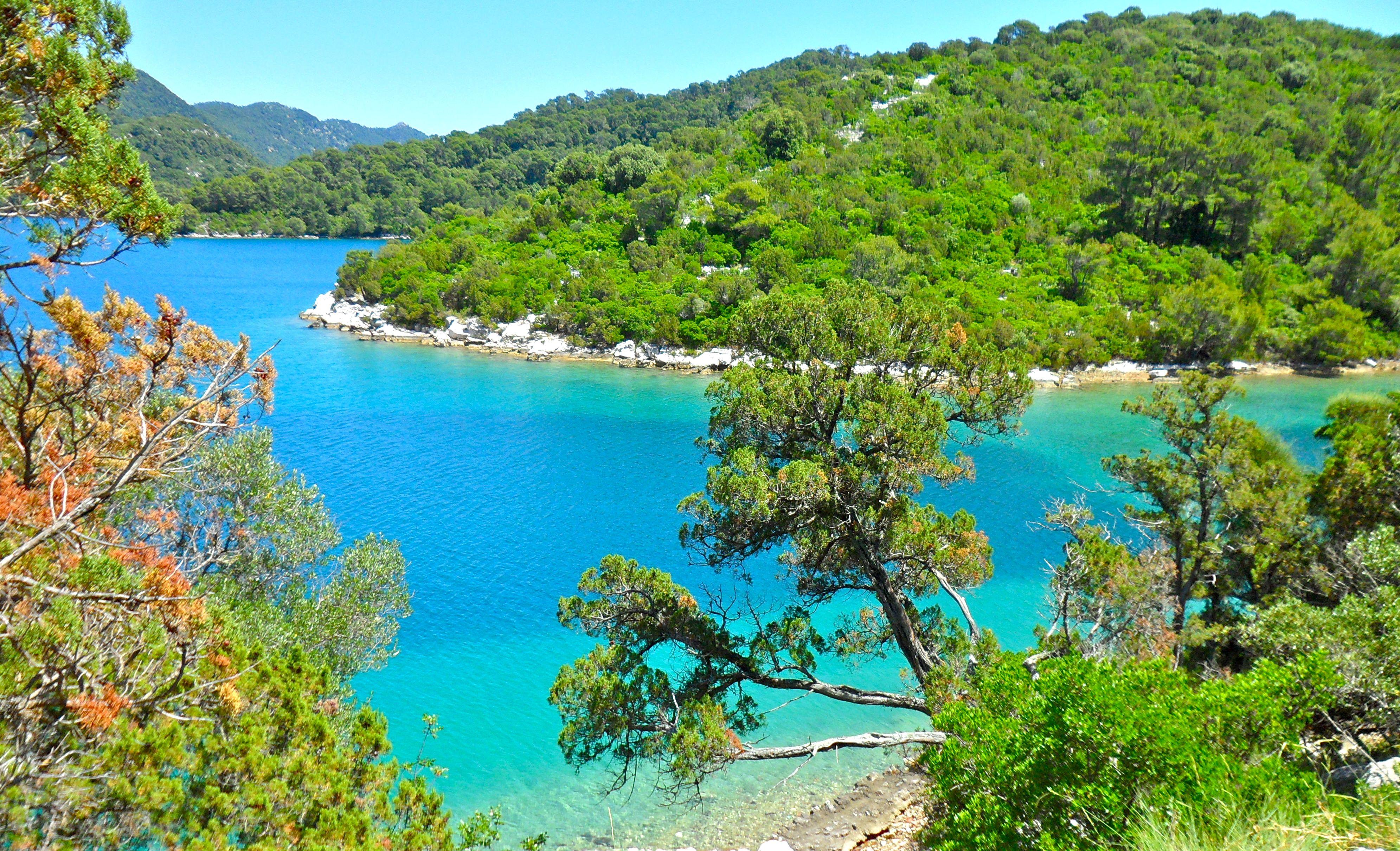 Beautiful National Park On Mljet Island In Southern Croatia Kroatie