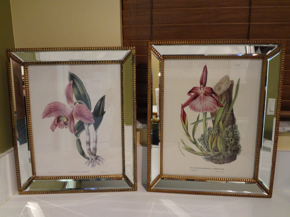 Two\'s Company Botanicals wall art print with mirrored frame . Set 2 ...