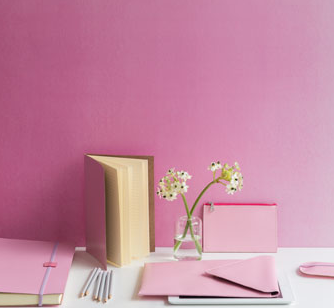 Floss pink recycled leather stationary