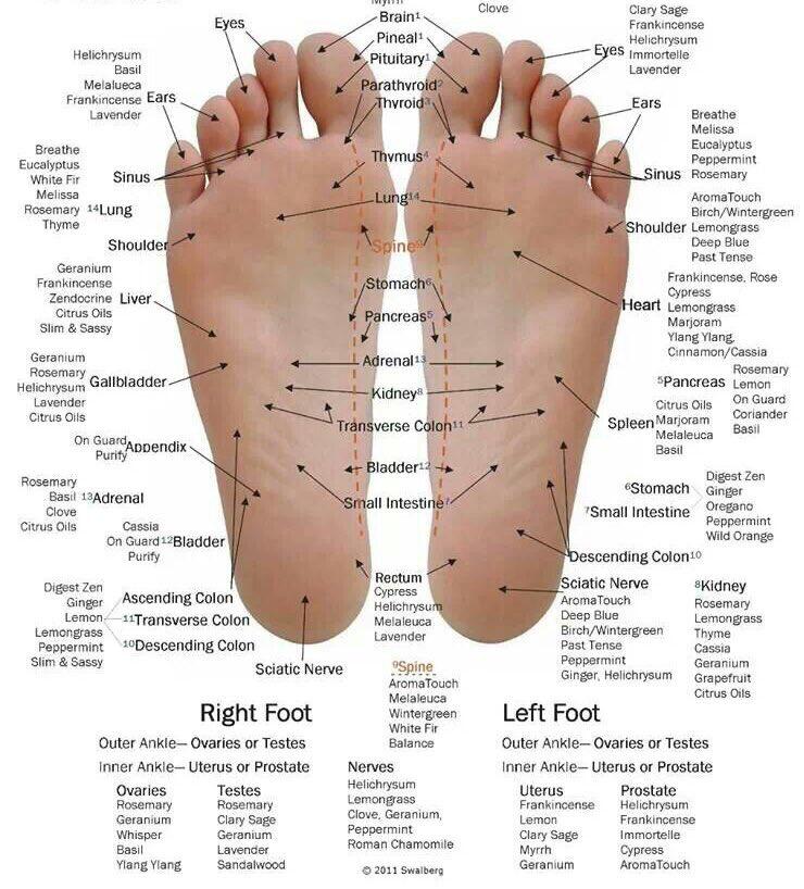 Eucalyptus + Unrefined Shea Butter: Massage On Feet To