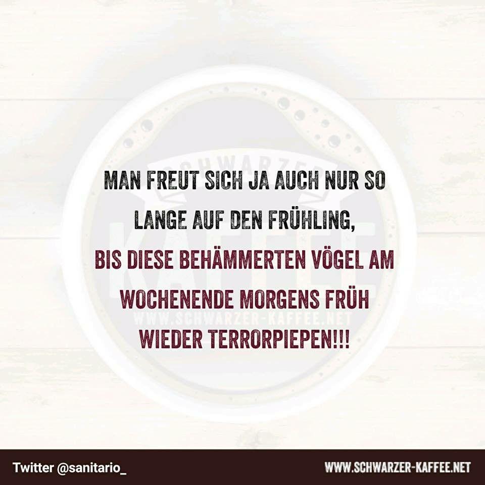 Pin Von Frank Schutze Auf Funny Quotes Witzige Spruche Lustige Spruche Spruche