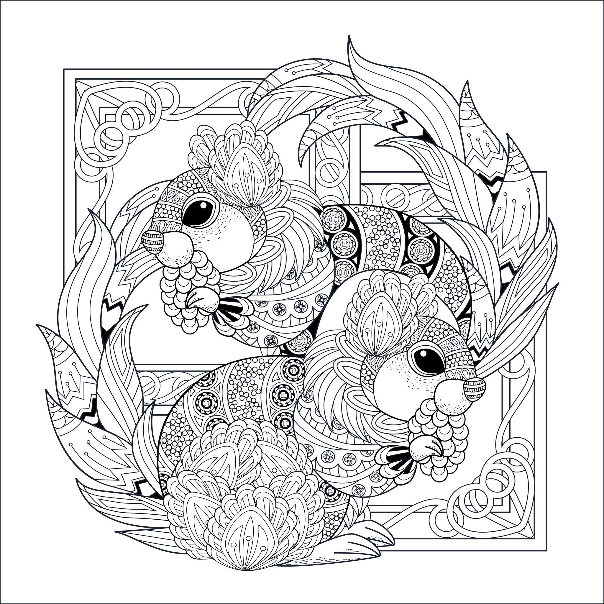 Colorear para Adultos : Ardillas Y Marmotas - 1, Desde la galería ...