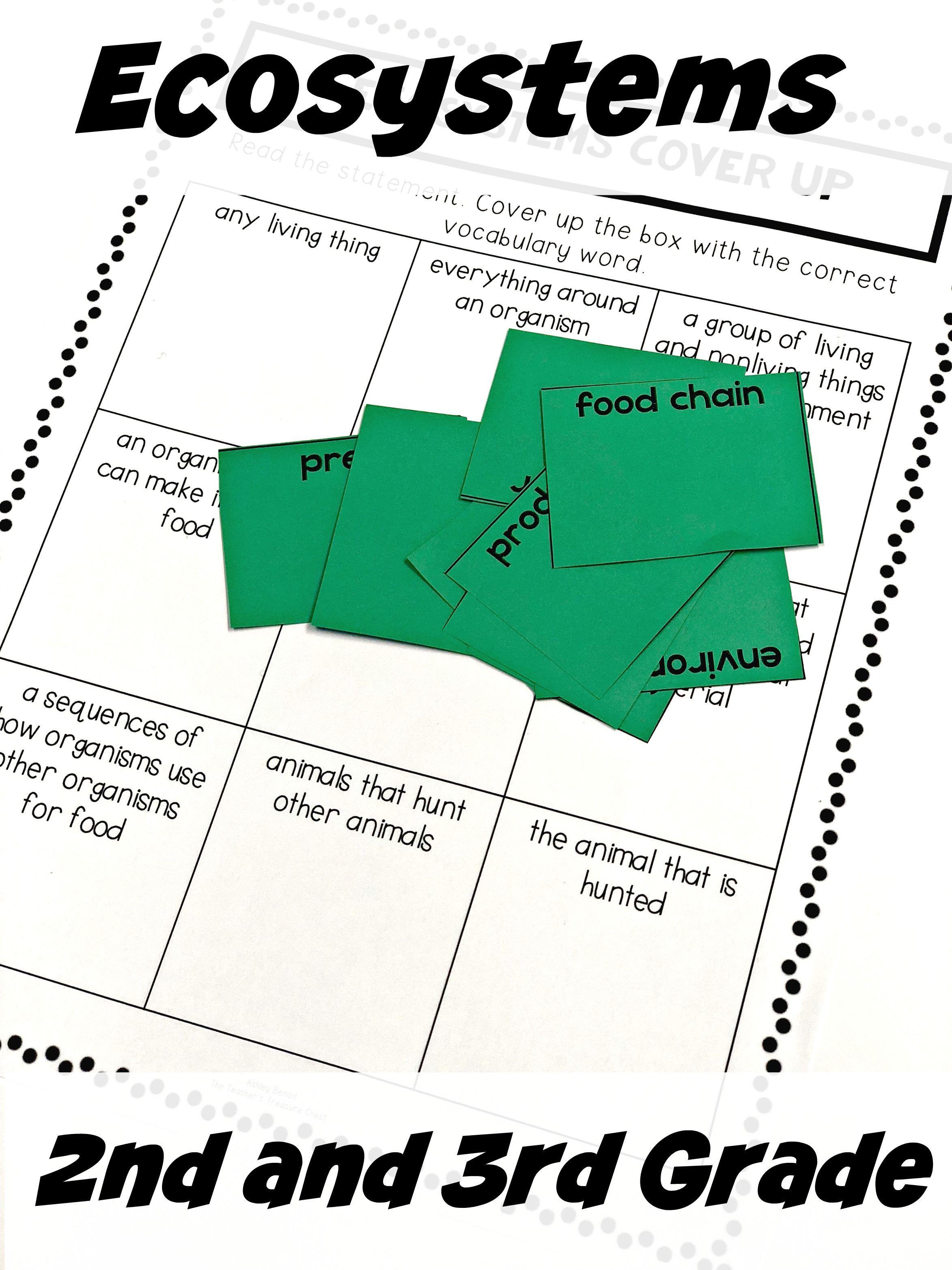 Ecosystem Lesson Worksheet