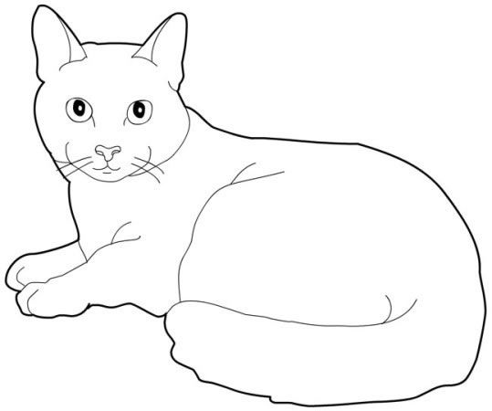 russian_cat Cats coloring pages for teens and adults | Cat ...