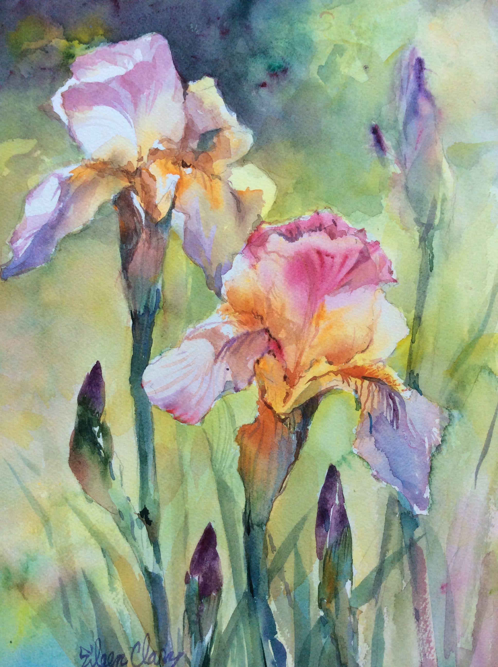 Watercolor Iris Iris Painting Floral Watercolor Watercolor Flowers Paintings