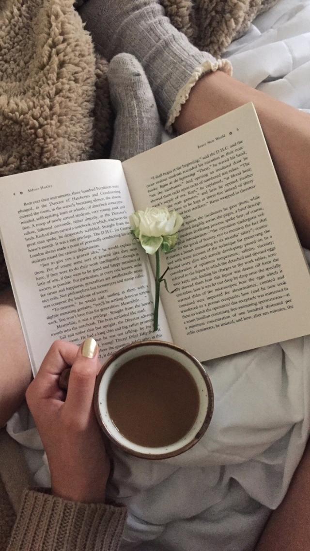 яркие как сделать фотографию книги и чая девочка попадала сцену