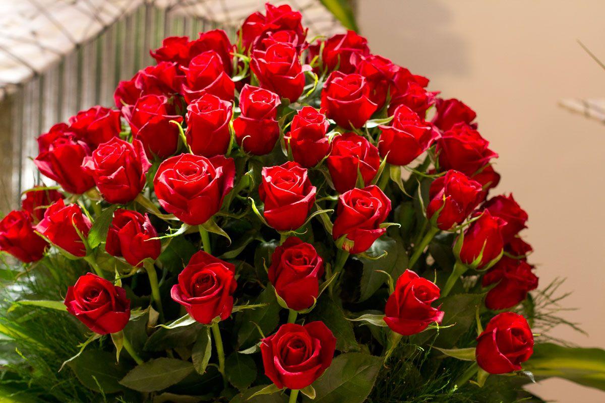 Beautiful red roses radical reds beautiful red roses izmirmasajfo