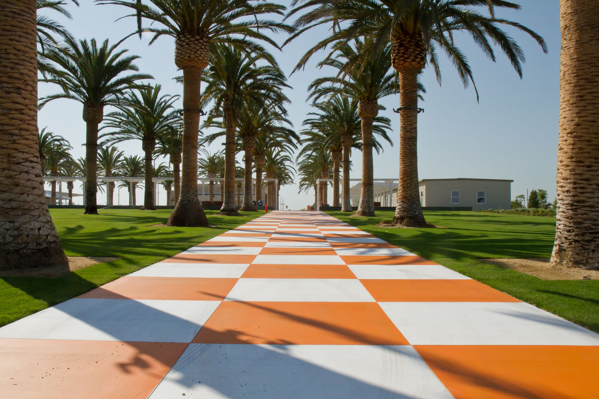 The checkered walkway at the Palm Court Arts Complex