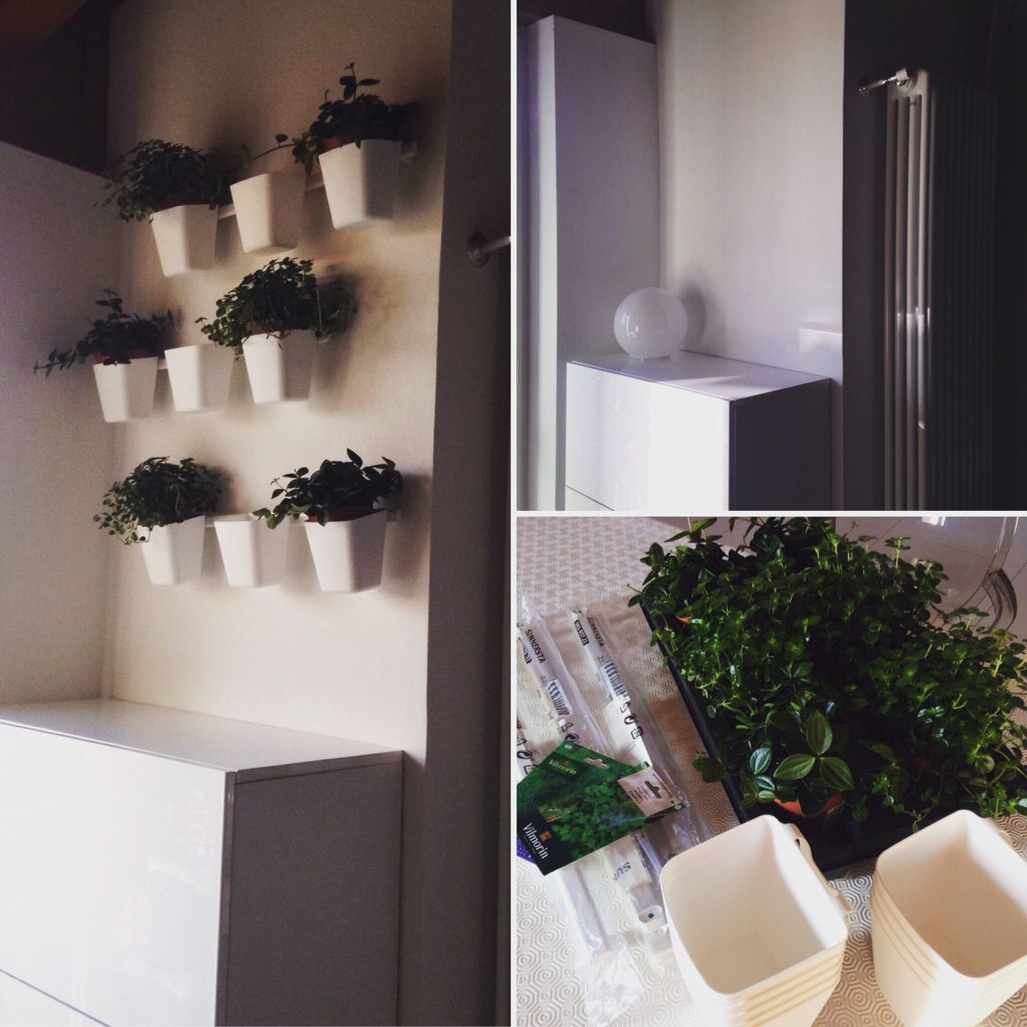 Binario Pensili Cucina Ikea a green corner @ home less than 30€. is possible with