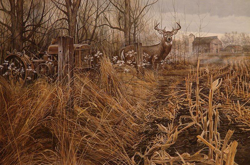 Deer Paintings | Country Legends - Whitetail Deer By Chris Kuehn