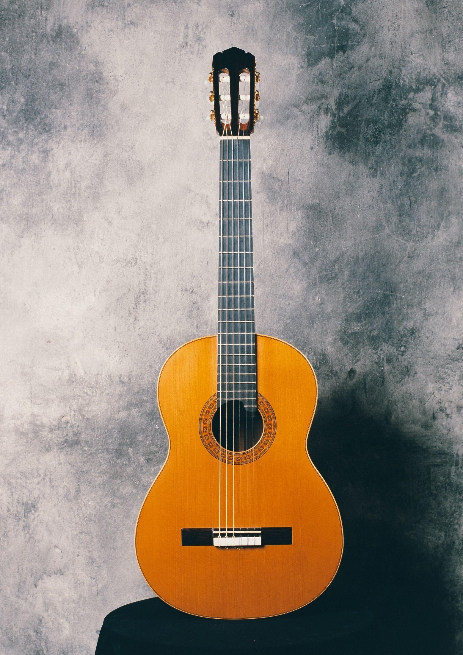 Guitarra cl sica modelo enrique garc a escala 650 mm for Guitarras la clasica
