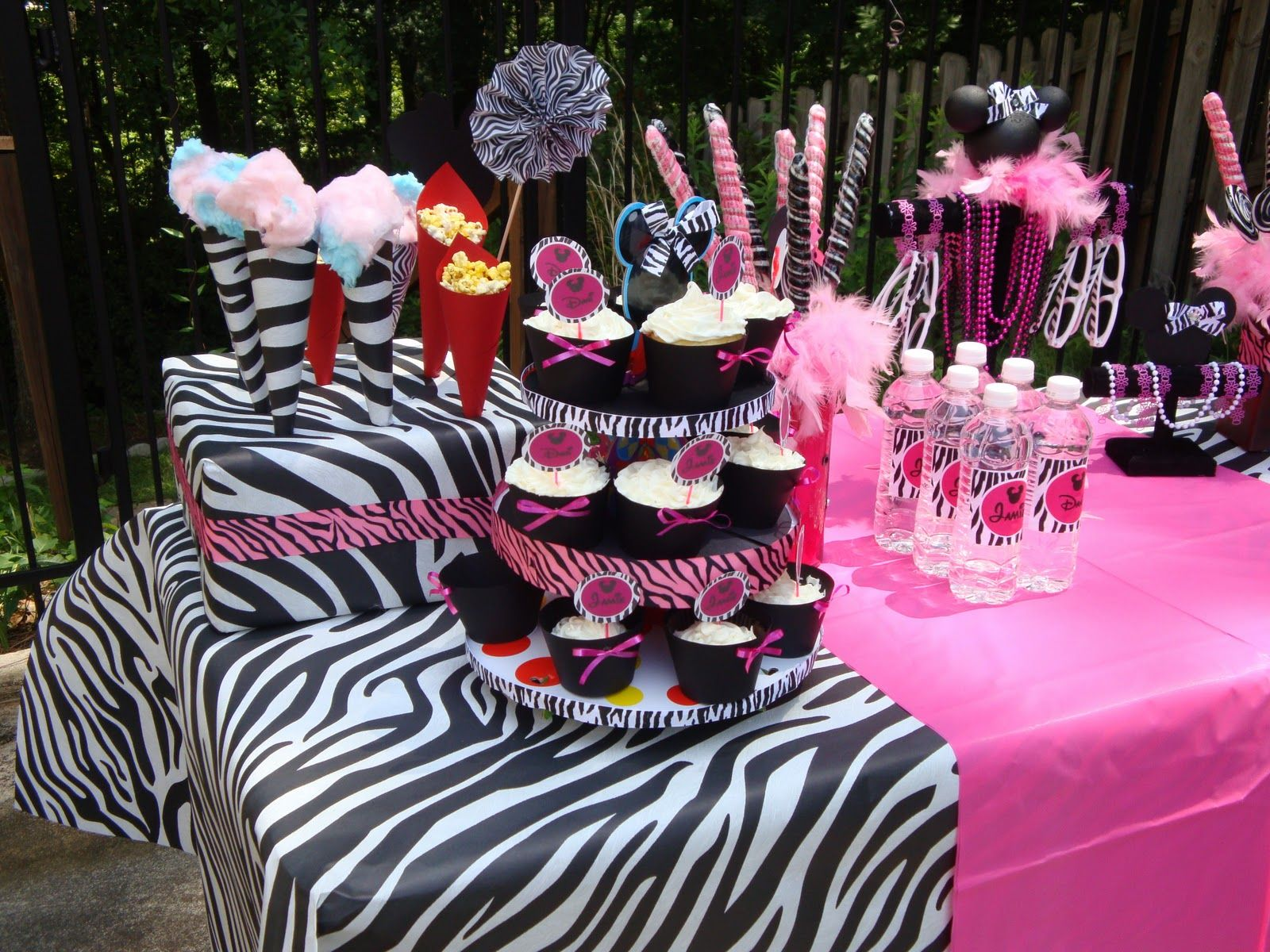 Minnie Mouse Partycute zebra and pink ideas Birthday Party