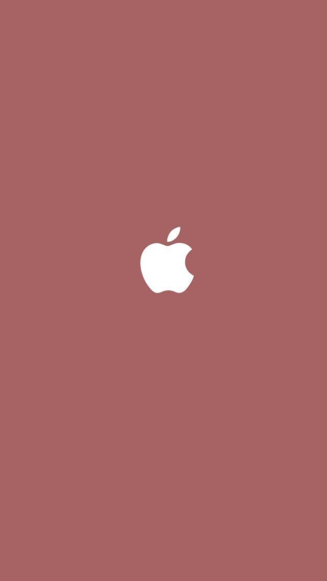 Apple Free Download Apple Download Free Apple Download