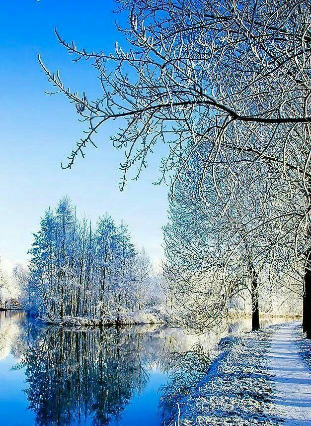 Beautiful Winter Winter Landscape Winter Nature Winter Scenery
