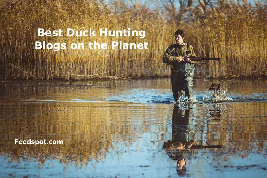 Top 10 Duck Hunting Blogs Websites & Newsletters To Follow